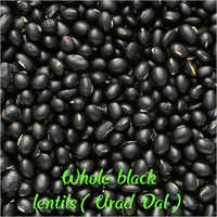 Whole Black Lentils (Urad Dal)