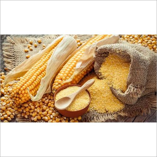 Maize Flour