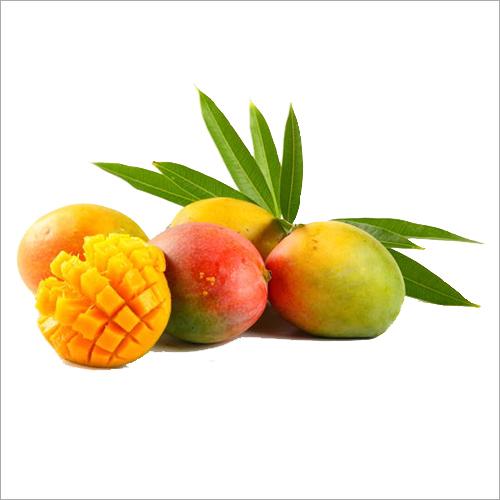 Alphonso Fresh Mango