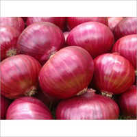Indian Fresh Onion