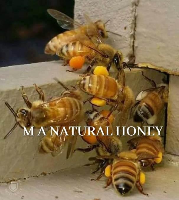Organic Bee Pollen