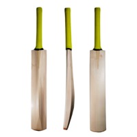 English Willow Cricket Bat - Haund