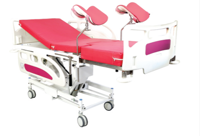 IMS-112 BIRTHING BEG MOTORIZED