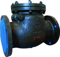 Swing Type Non Return Valves