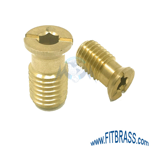 Pool Cover Brass Anchor Head Screw Bolt