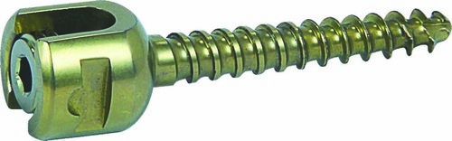 MONOAXIAL SCREW (UNI)