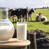 Cow Natural Milk