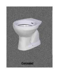 conceled Toilet