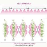 LED Growlamp between Plants