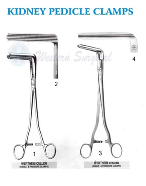 Kidney Pedicle Clamps