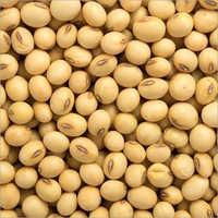 Natural Soyabean