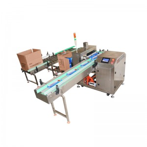 ZH-90 Type Carton Packing Machine for Box