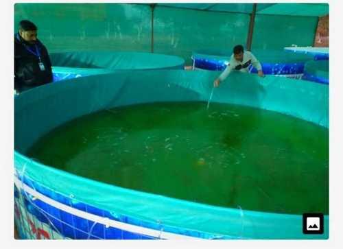 fish farming tank