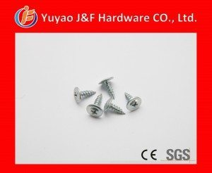 truss head self tapping screw