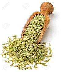 Tulsi Green Fennel