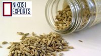 VEDANT FENNEL SEED