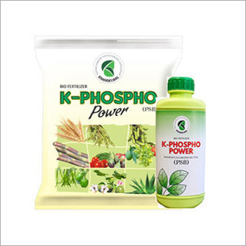 Phosphorous Bio Fertilizer
