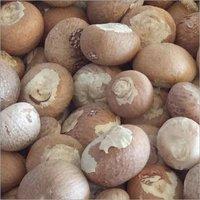 Fresher Betel Nut