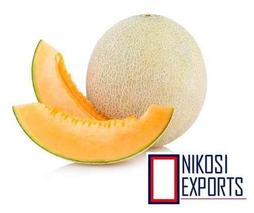 Organic Muskmelon