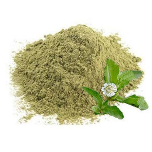eclipta alba herbal powder
