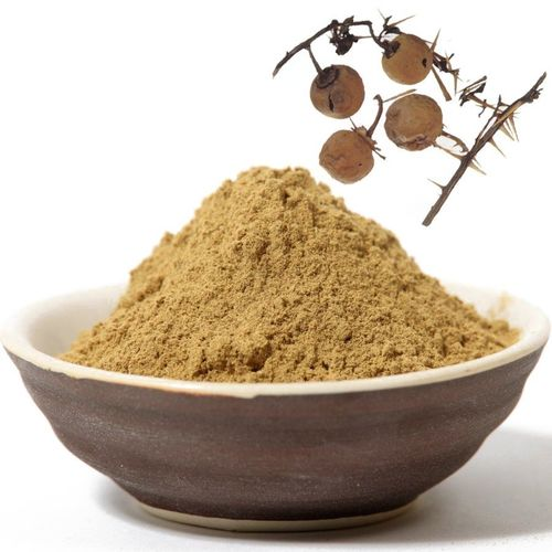 solanum surattense herbal powder