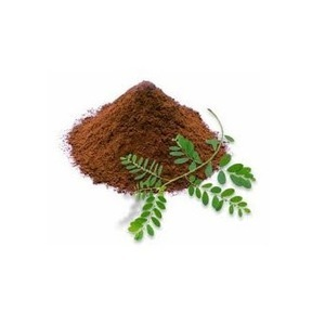 phyllanthus fraternus herbal powder