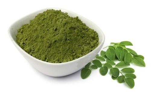 acalypha indica herbal powder