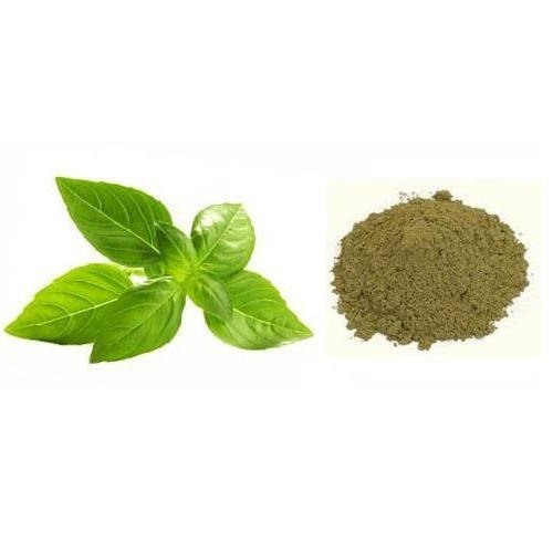 ocimun sanctum herbal powder