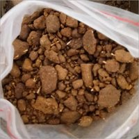 Cattle Feeds & Oil Cakes