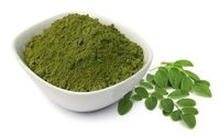 moringa olefera leaf herbal powder