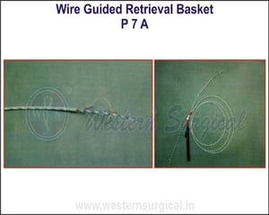 Wire Guided Retrival Basket