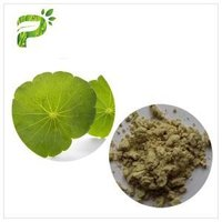 centella asiatica herbal powder