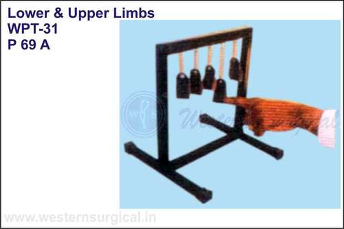 Lower & Upper Limbs