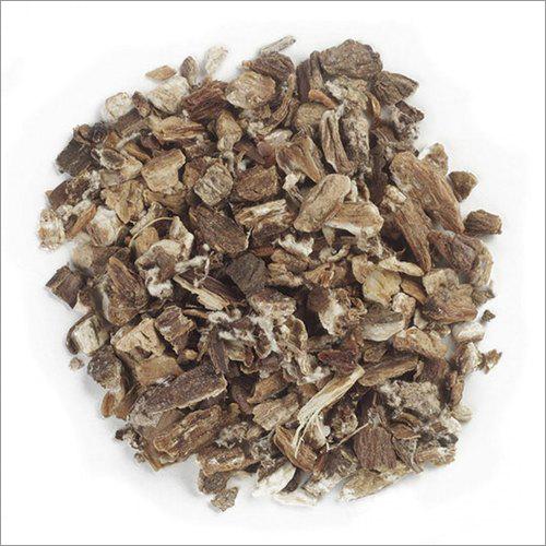 Dried Burdock Root