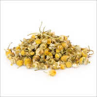 Dried Chamomile Flower