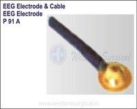 EEG Electrode