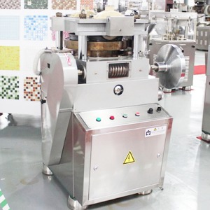 ZPW-19B tablet press machine for making seasoning cubes