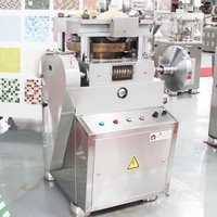 ZPW-19B Tablet Press Machine