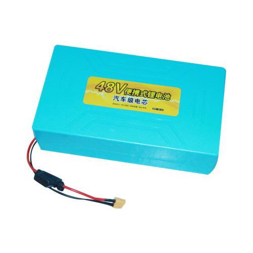 48V Portable Lithium Battery Pack