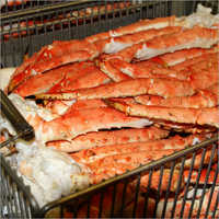 Norwegian King Crab