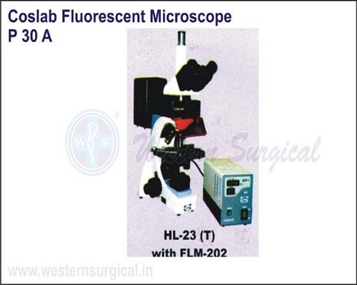 FLM - 202