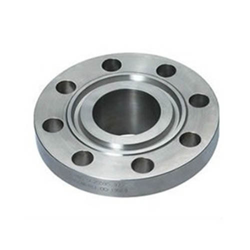 SS Ring Type Joint Flange