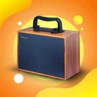 Dvaio S900 Wooden Portable  Wireless Speaker