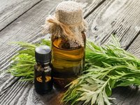 Artemisia Vulgaris Oil