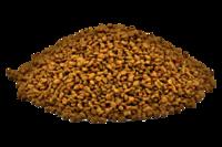 Fenugreek Seeds, Trigonella Foenum-Graecum