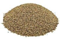 Ajwain Seeds, Trachyspermum ammi