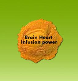Brain Heart Infusion Powder