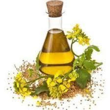 Nirgundhi oil