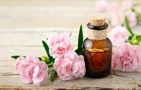 Carnation oil