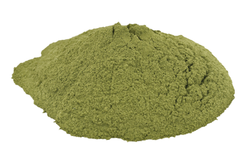 Dried Ziziphus Spina-Christi Leaves Powder